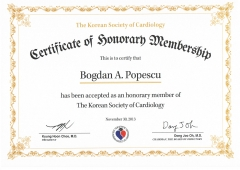 Honorary member Korean Society of Cardiology