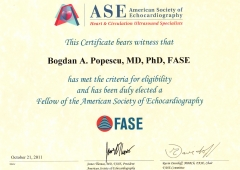Fellow of the American Society of Echocardiography